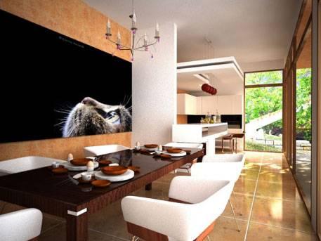 Proiect casa de 410 mp (1)